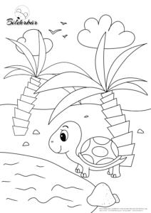 Ausmalbild Schildkröte